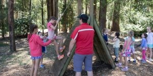 Low Ropes Course at Camp Toolangi